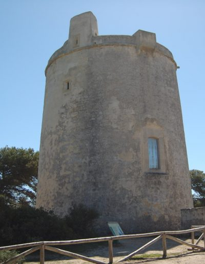 torre-tajo_22-min
